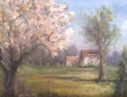 Spring Visits a Rockbridge County Farm